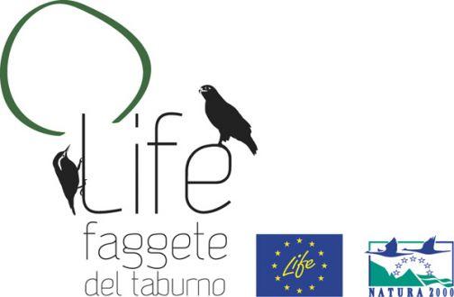 Il progetto Life+ Faggete del Taburno entra nella sua fase operativa