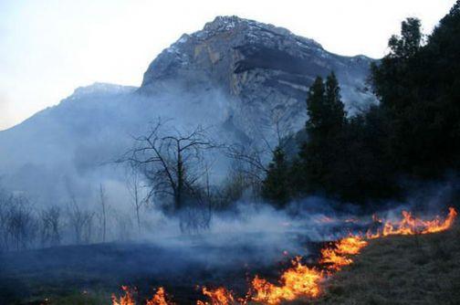 Prevenzione incendi boschivi, la Fai Cisl scrive al Prefetto