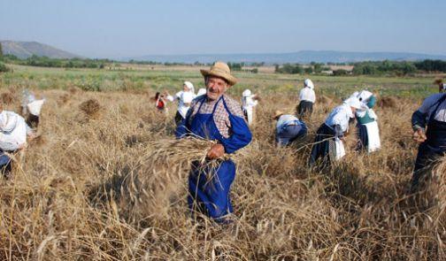 Festa dell'agricoltura dal 19 giugno a Squille