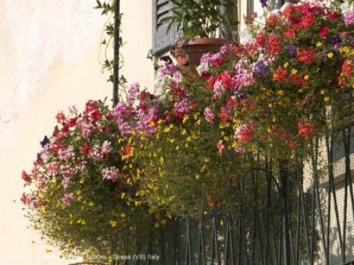 Telese Terme, Concorso 'Balconi in fiore': il 15 agosto la premiazione della VII edizione.