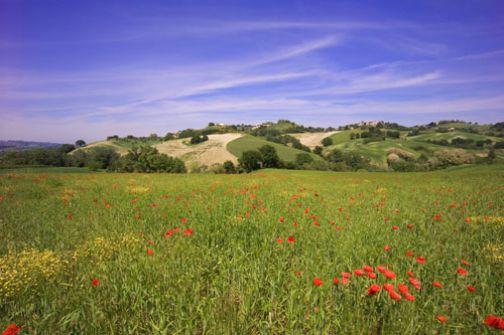 Taburno –Camposauro, la nuova sfida parte dall'ecoturismo