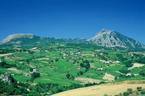 Torrecuso, Vinestate: definito il programma dell'edizione 2011