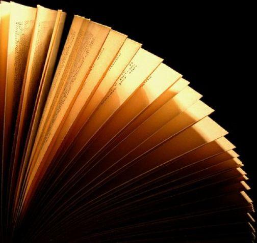 Alla libreria Luidig presentazione del libro 'Verrai a trovarmi d'inverno'
