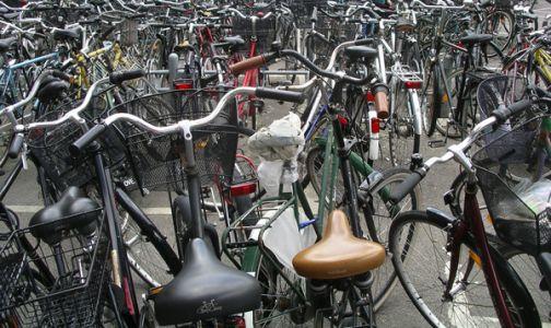 Ciclismo, Arnaldo Pedicino è il nuovo presidente del Veloclub Sangiorgio.