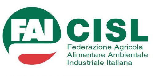 Forestali, Fai Cisl: 'il 5 aprile convocazione della Regione Campania'