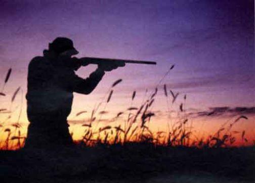 Il Tar sospende la preapertura della caccia in Campania