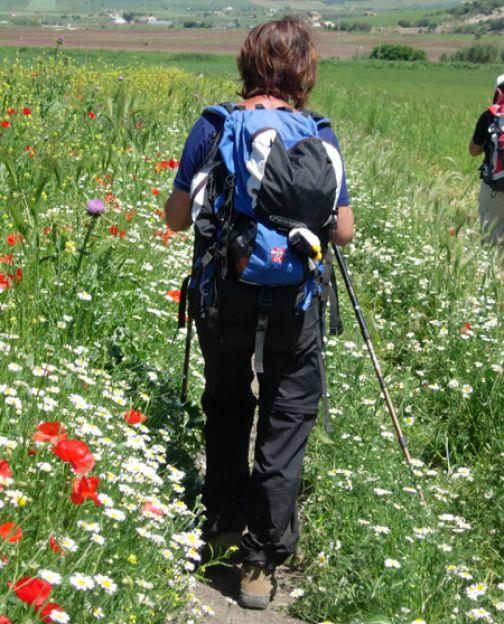 Gal Titerno, la Via Francigena del Sud – pellegrinaggio a piedi a Pietrelcina