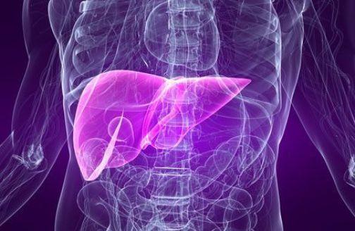 Patologie del fegato, a Benevento il commissario europeo per la salute Tonio Borg