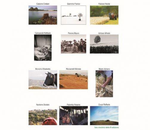 Concorso fotografico Cartolina d'autore: 'Archeologia – Archeologia Industriale'