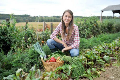 Contributi in natura alle imprese agricole giovani per servizi di sostituzione
