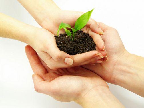 Coldiretti, Assicurazioni agricole: il Ministero proroga al 31 maggio