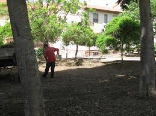Benevento, verde e decoro pubblico: emanata ordinanza sindacale