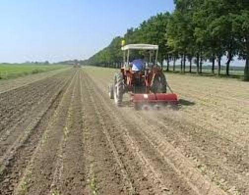 Inail, 45 milioni di euro alle piccole aziende del settore agricolo