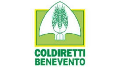 Aboliti i Voucher, Coldiretti Benevento: 'Urgono nuovi strumenti'