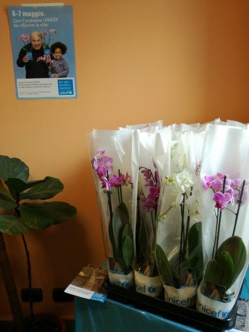 Gesesa sostiene l'Azione Unicef per i bambini sperduti