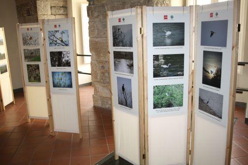 """Mostra fotografica sull""""Oasi di protezione zone umide di Benevento'"""
