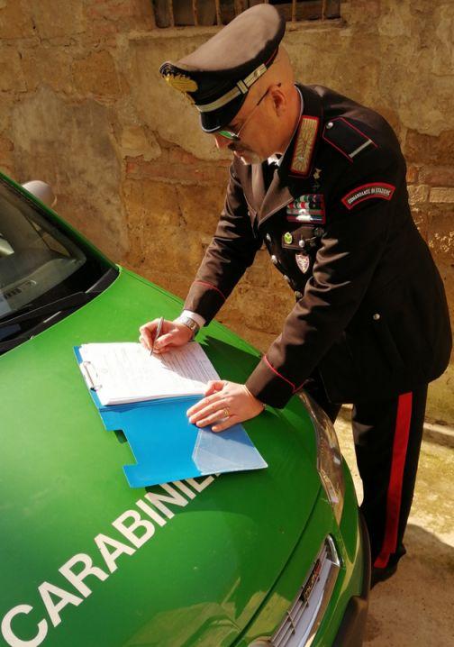 Carabinieri Forestali, interventi a Solopaca e Benevento