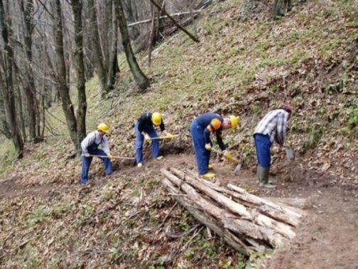 Forestazione, la Provincia anticipa le spettanze