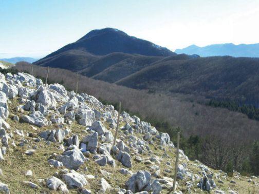 """Fase 2, Di Maria e le Comunità Montane: fondamentale il nuovo """"territorialismo"""""""